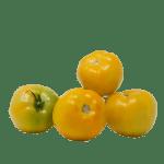 tomate-jaune