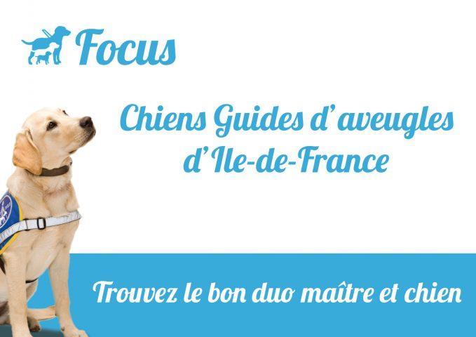 les chiens guides d'aveugles de coubert